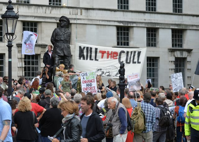 Animal rights campaigners protest on Whitehall (John Stillwell/PA)
