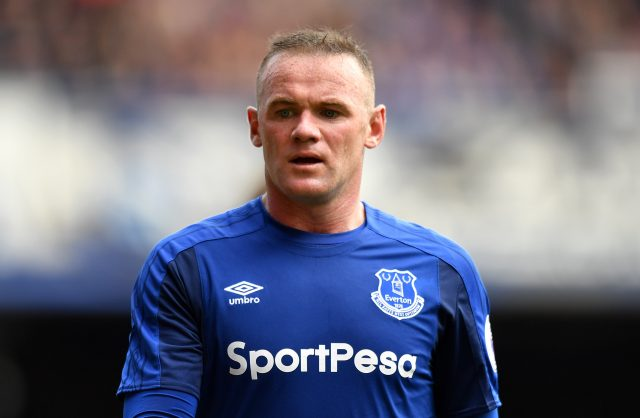 Wayne Rooney is one of many signings made by Everton this summer