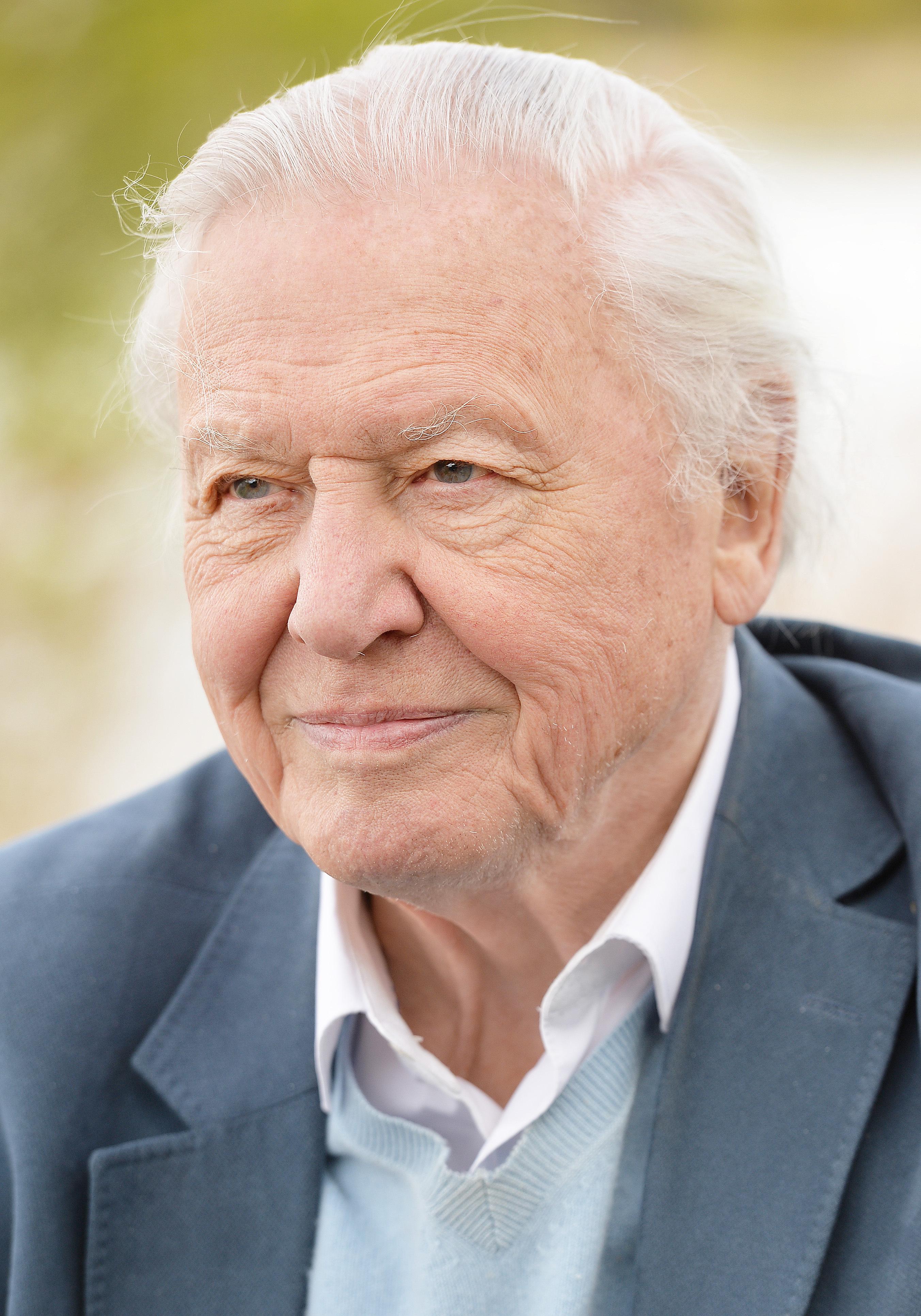 Richard Attenborough (1923?014) Richard Attenborough (1923?014) new pics