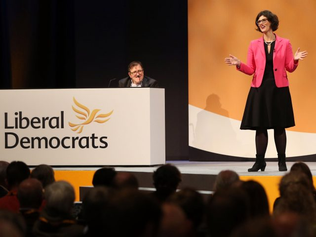 Transition deal could lead to Brexit reversal, says Lib Dem deputy leader
