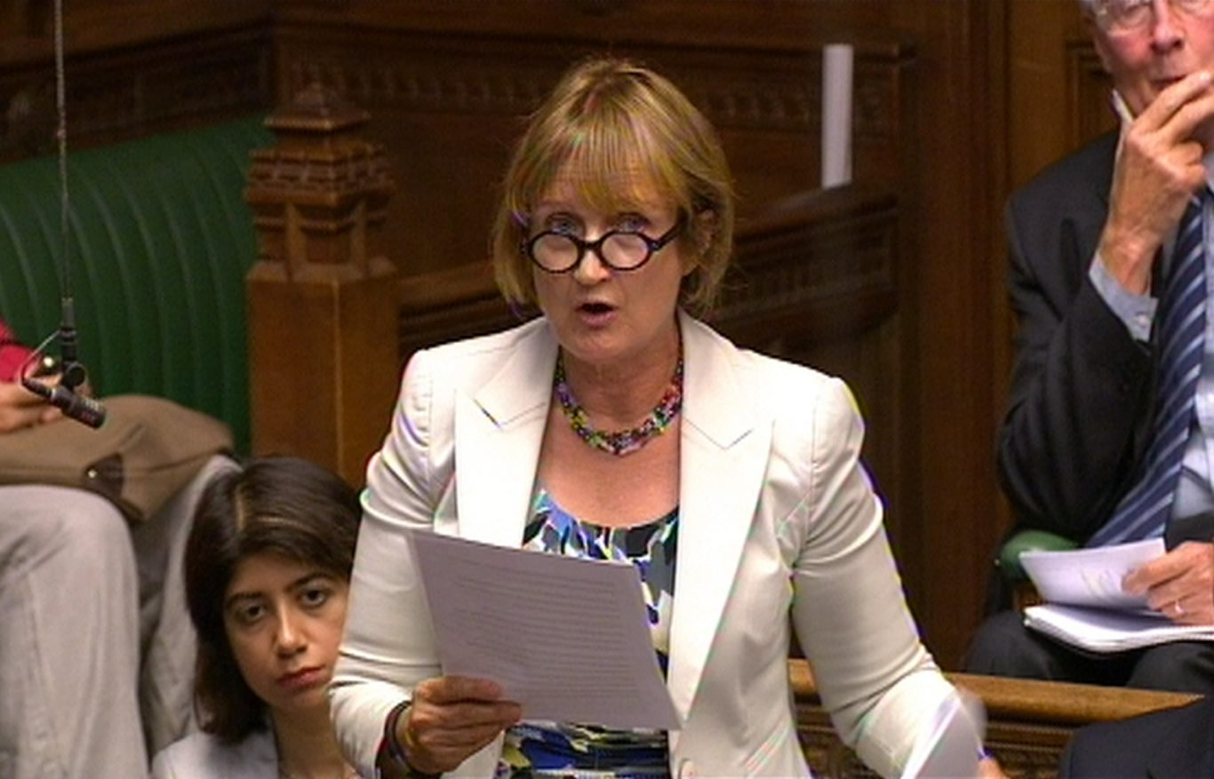 Dame Tessa Jowell MP speaking in the House of Commons (PA)