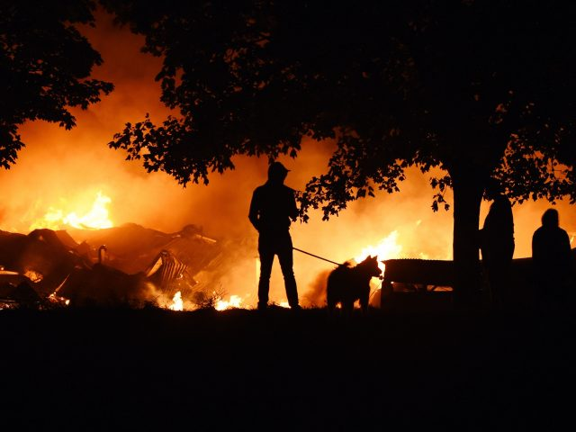 Fire crews at the scene in Tottenham