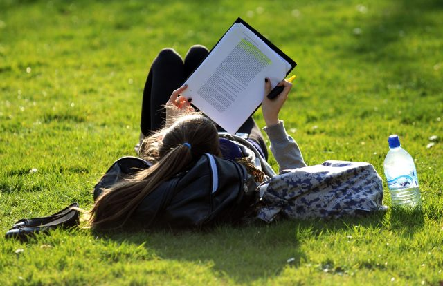 A girl studies in the afternoon sunshine