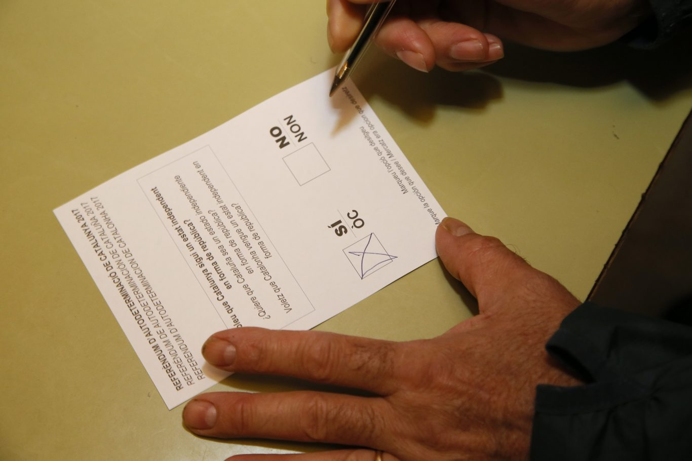 One of the ballot papers printed for the vote (Bob Edme/AP)