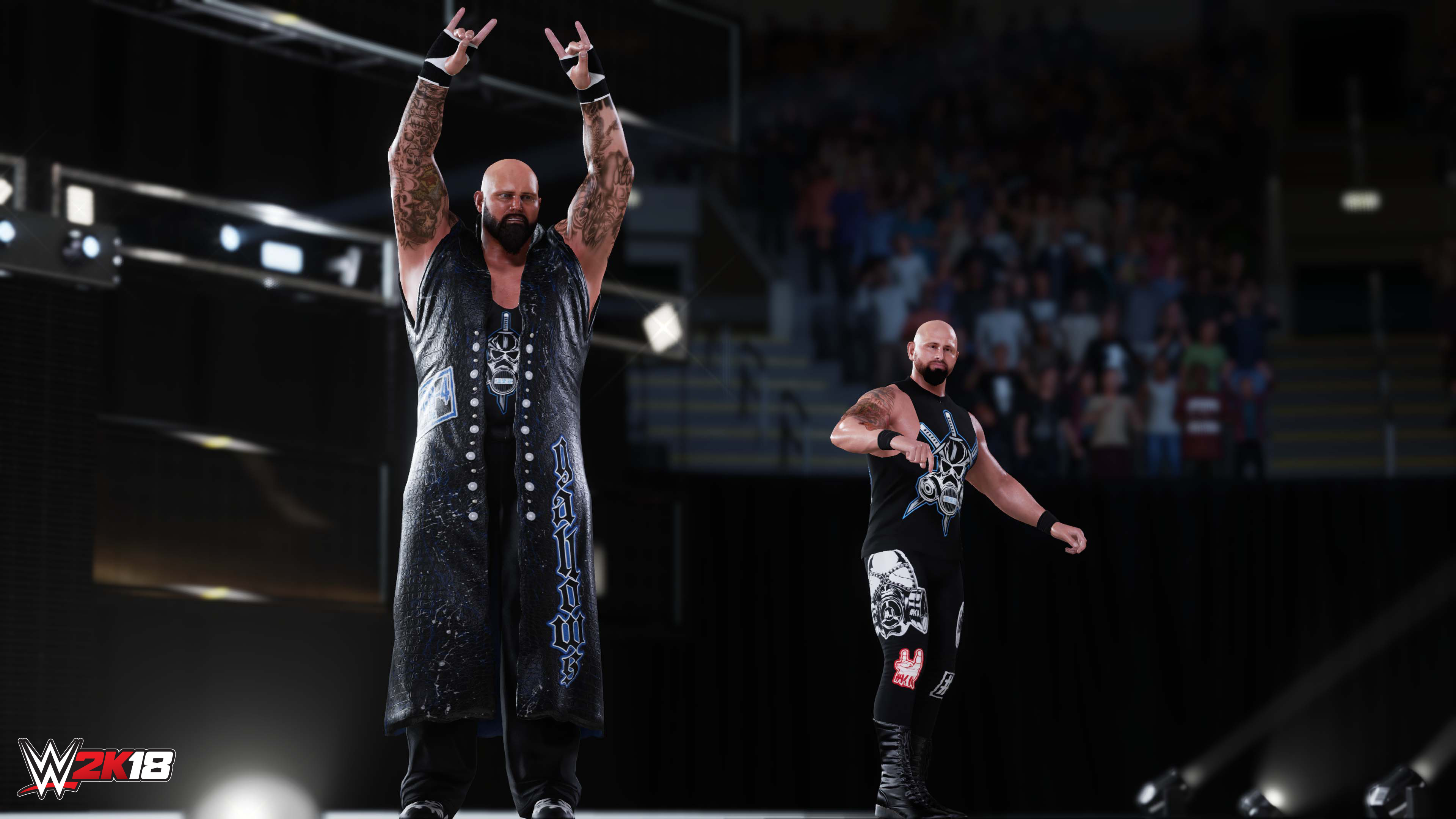 Anderson and Gallows in WWE 2K18