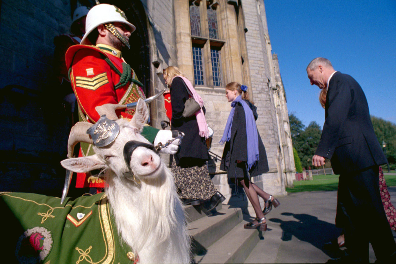 Shenkin the goat stands guard at the entrance to Cardiff Castle in 2000 (Scott Ramsey/PA)