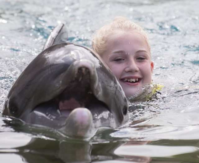 Jaz Ellis, 8, From Poole, Dorset, swims with a dolphin during the Dreamflight visit to Discovery Cove in Orlando, Florida