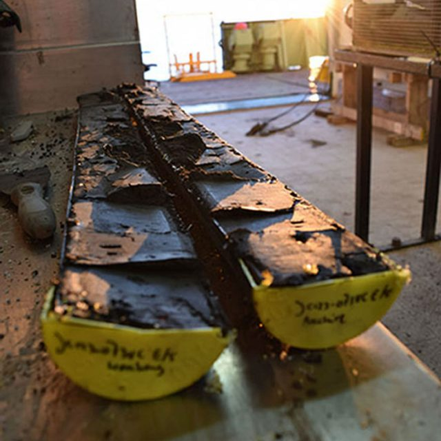 Core samples taken from the seabed