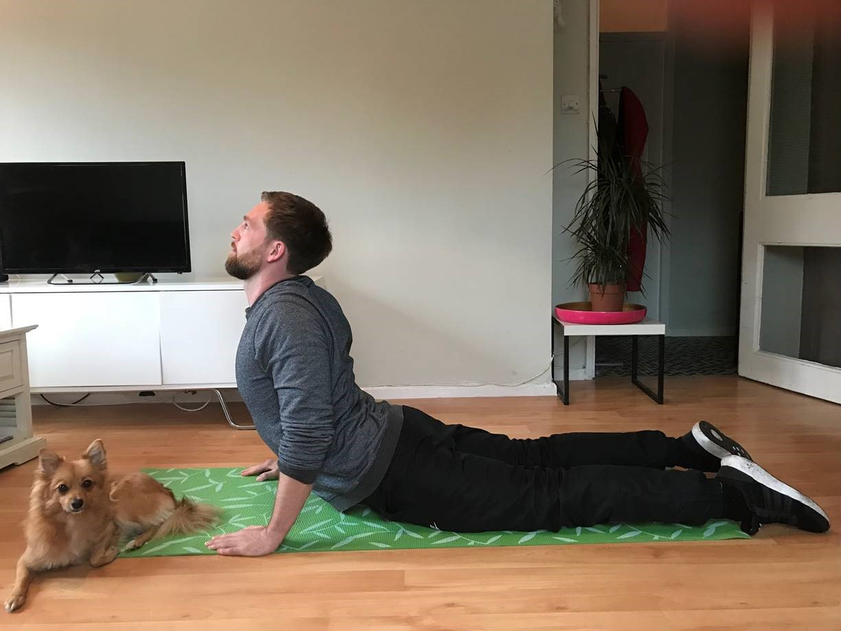 Exercises with your dog (Right Path Fitness/PA)