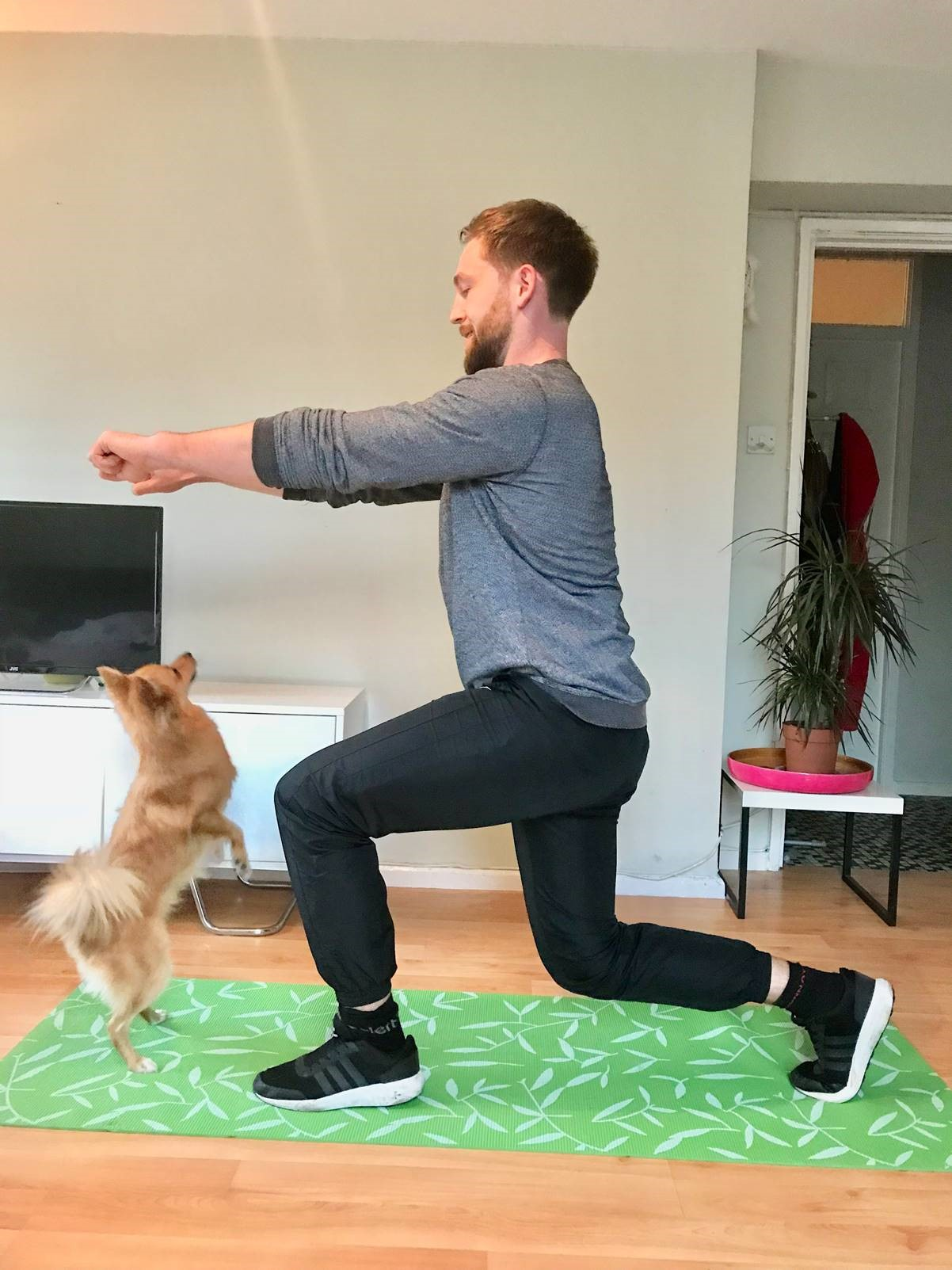 Exercises with your pet (Right Path Fitness/PA)