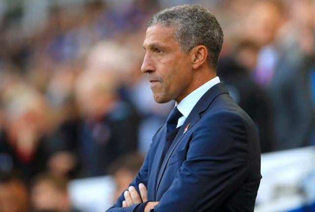 Chris Hughton led Brighton to the Premier League last season