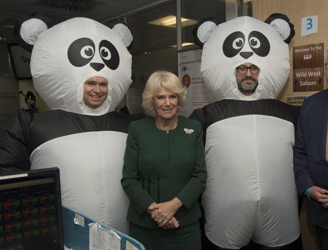 Pandas and Camilla