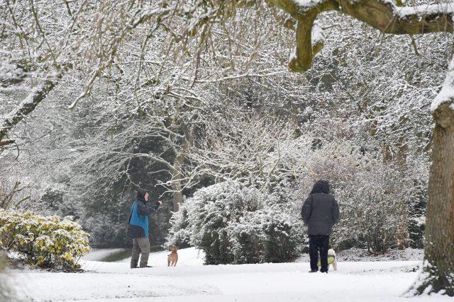 Dog walkers enjoy the seasonal weather. (Anthony Devlin/PA)