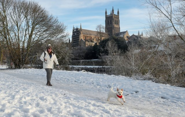 It was a frost walk for this dog in Worcester ( David Davies/PA)