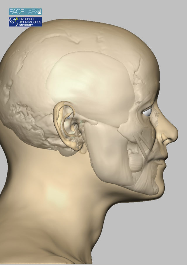 Sophisticated software was used to reconstruct the face from his skull. (Face Lab LJMU/PA)