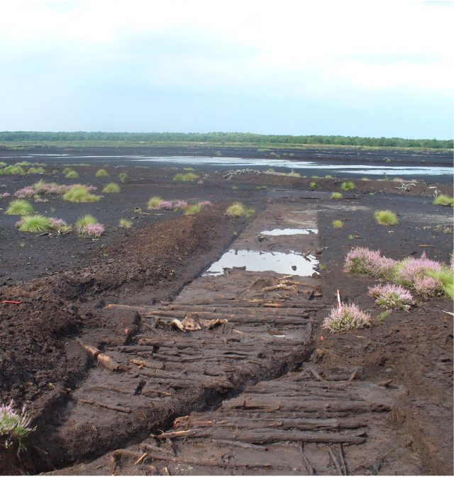 A Neolithic trackway and platform at Lindholme, Hatfield, Doncaster, South Yorkshire (Historic England/PA)