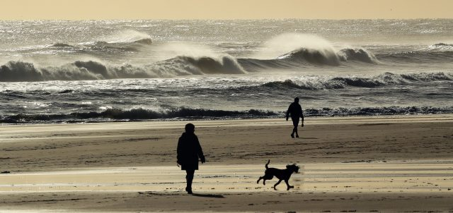 Dog walkers during a cold autumn day on Tynemouth beach
