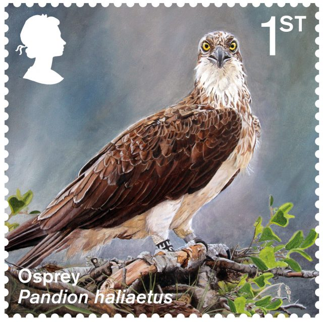 A stamp featuring an osprey (Royal Mail/PA)