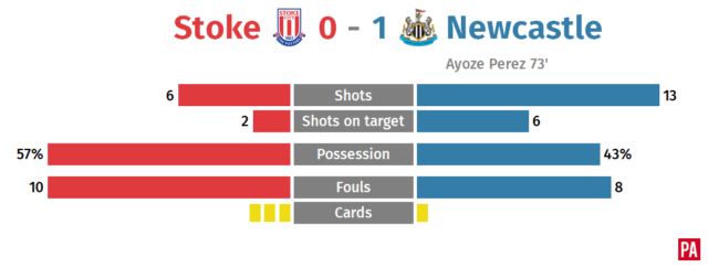 Pressure mounts on Mark Hughes as Stoke lose to Newcastle PLZ Soccer