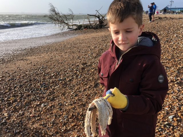 Frank Pinnock, seven, from Portsmouth, returns a starfish to the sea at Southsea beach, Portsmouth