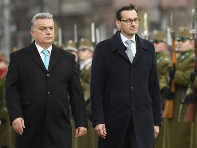 Mr Orban and Mr Morawiecki inspect troops in Budapest