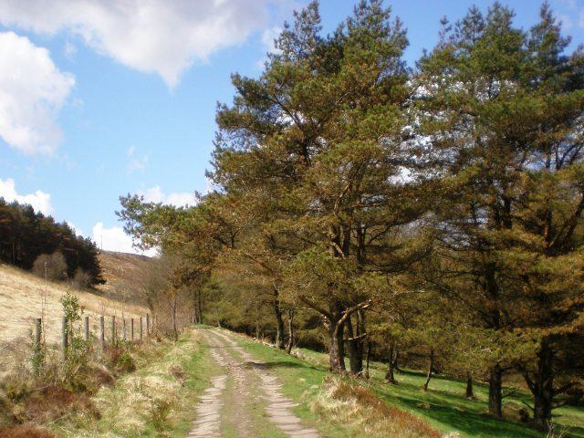 The Smithills estate, on Winter Hill near Bolton