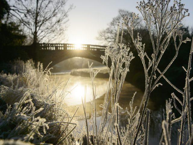 A winter wonderland in Pollok Park