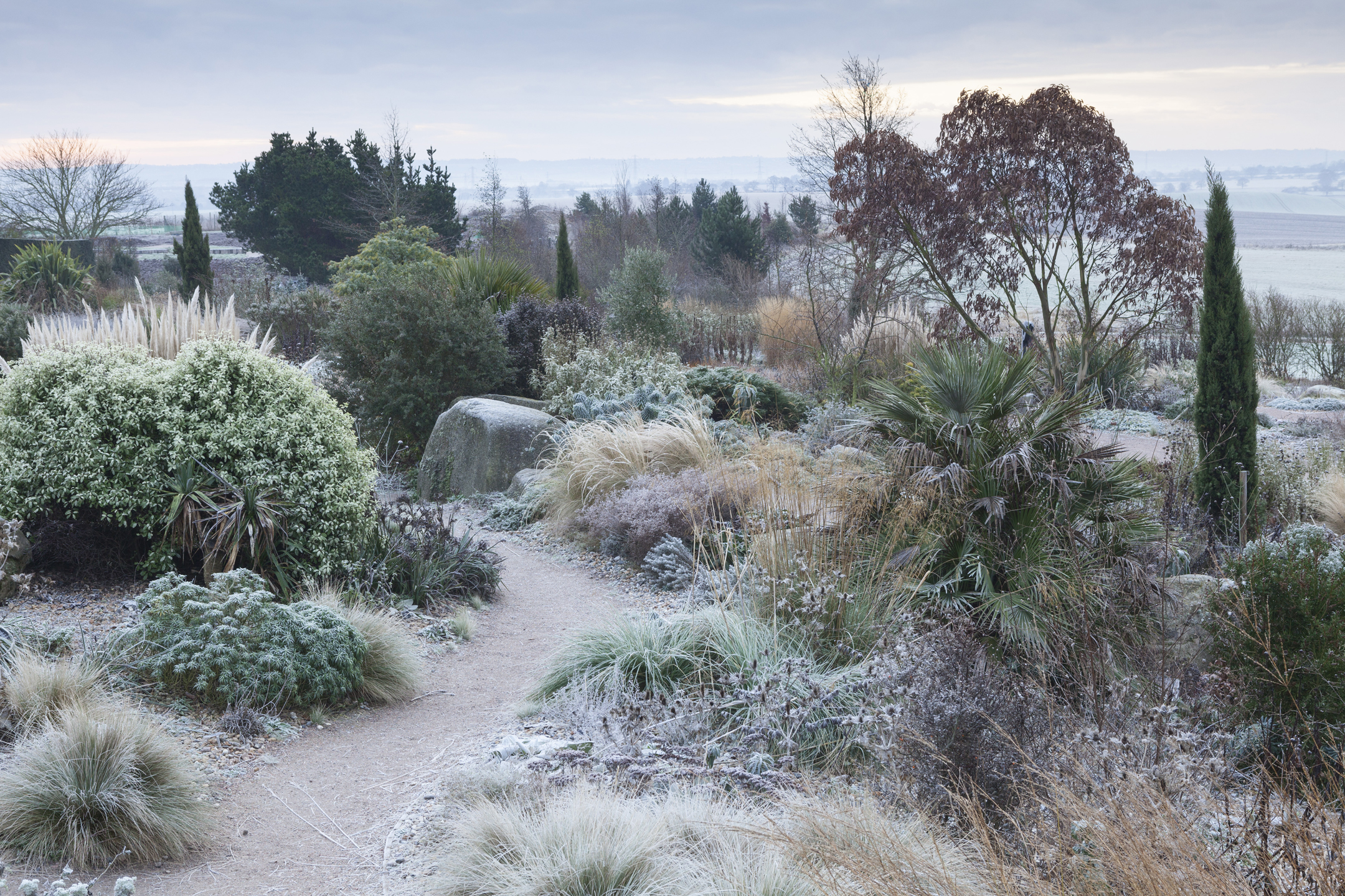 Frost in The Dry Garden in winter at RHS Garden Hyde Hall. (RHS/Lee Beel/PA)