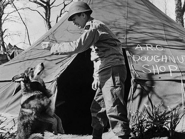 Chips protected his platoon during beach landings in July 1943