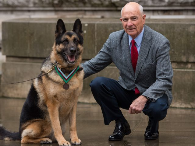 US military working dog Ayron, who received the award on behalf of Chips, with Chips' former owner John Wren