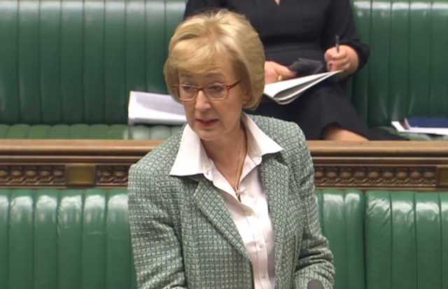 Commons Leader Andrea Leadsom addresses MPs during the debate