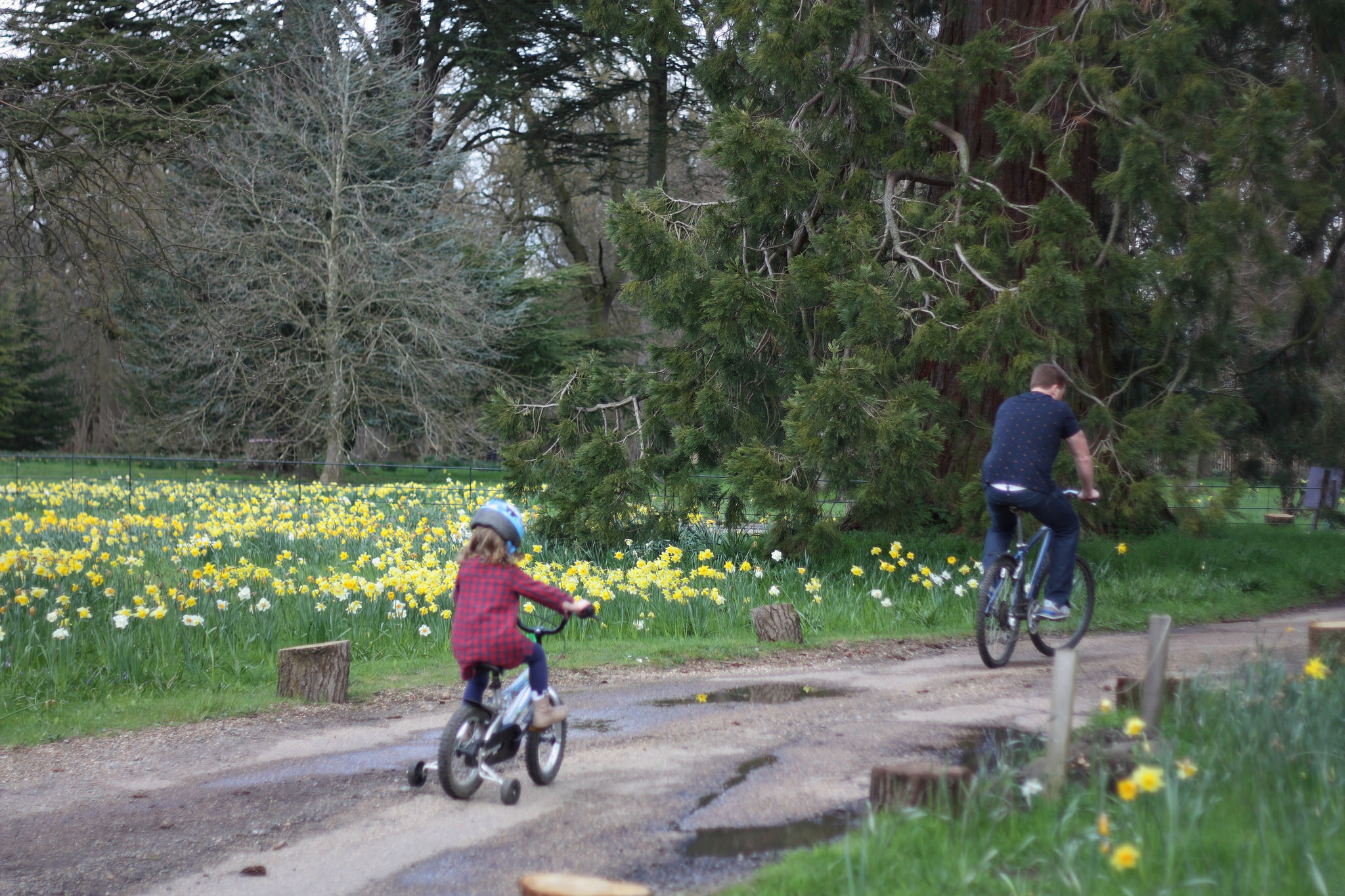 Child on a bike ride with dad