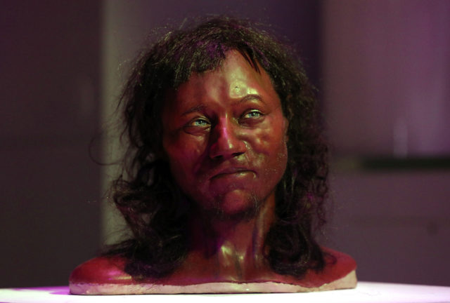 Cheddar Man model