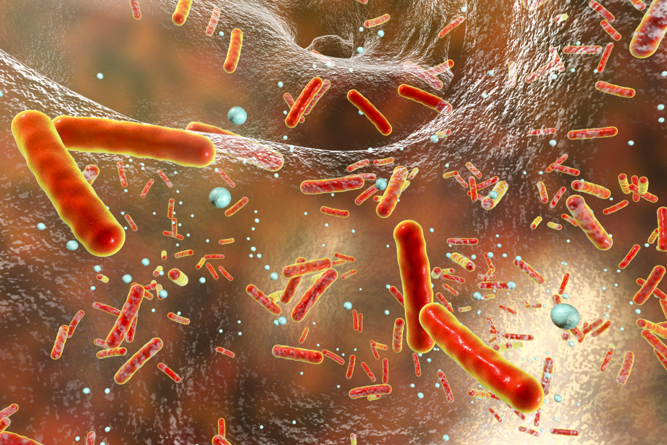 antibiotic resistance in bacteria Antibiotic resistance has been called one of the world's most pressing public health problems the smart use of antibiotics is the key to controlling the spread of resistance.