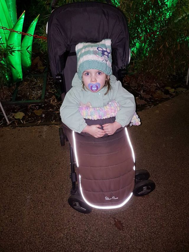 Georgia-May during an episode at the zoo in November 2017, having been perfectly healthy just minutes earlier (PA Real Life/Collect)