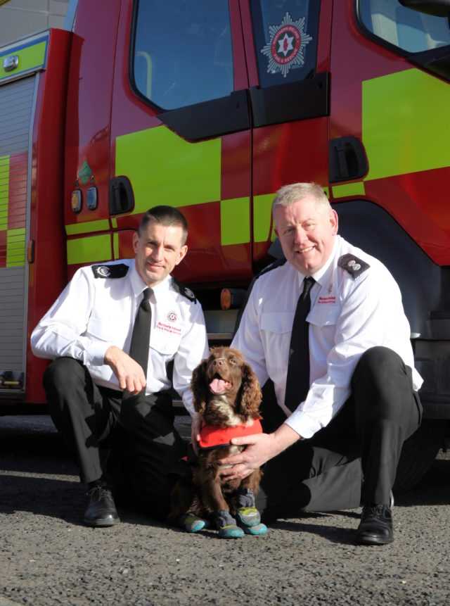 Reggie with his handlers at NIFRS (NIFRS/PA