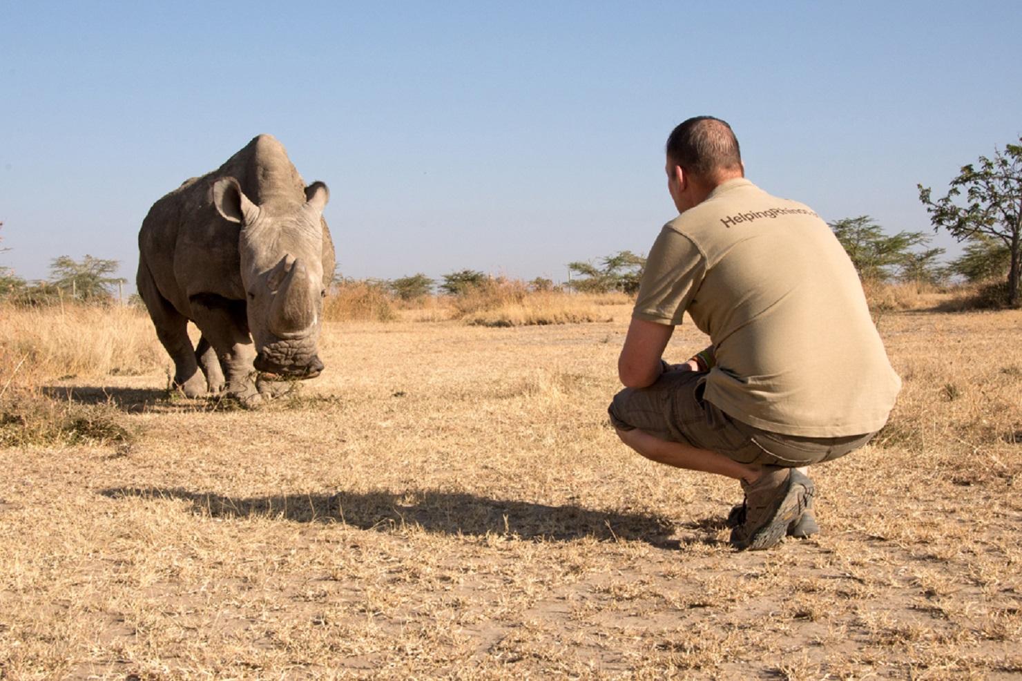 World's last male northern white rhino dies - Sunday Post