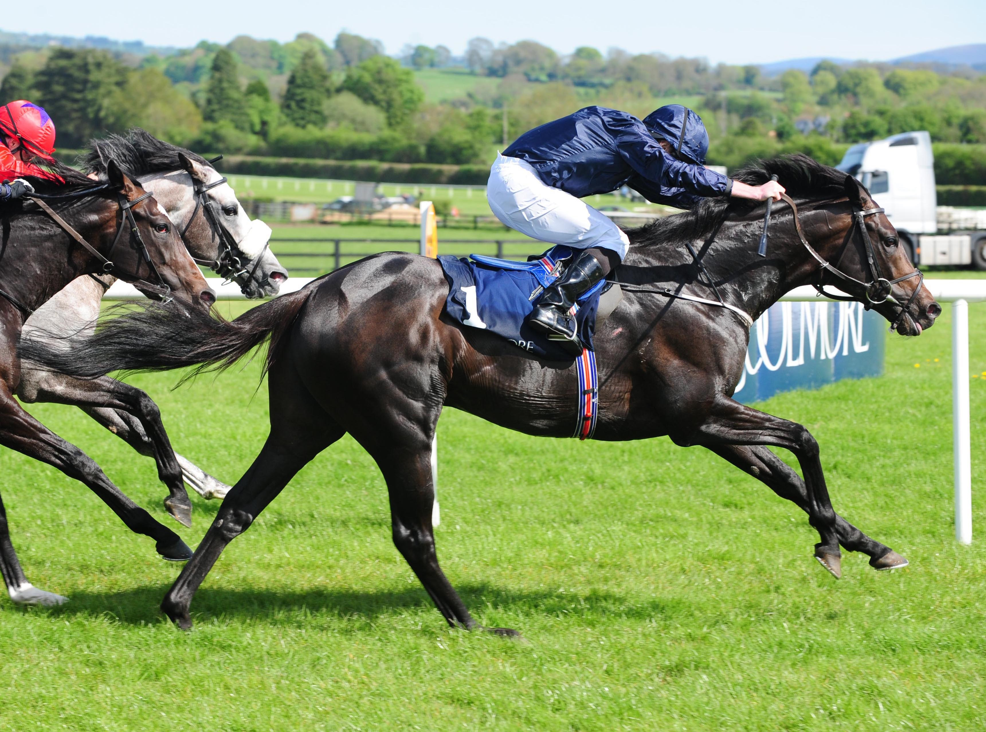 Last Year S Investec Derby Runner Up Cliffs Of Moher