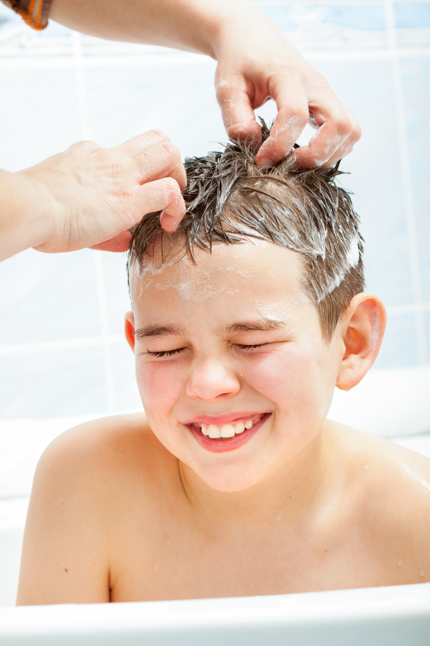 how to get rid of lice with olive oil
