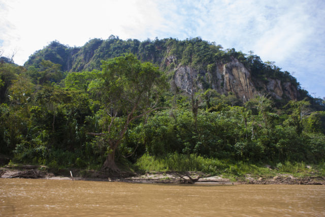 Madidi National Park in Bolivia.