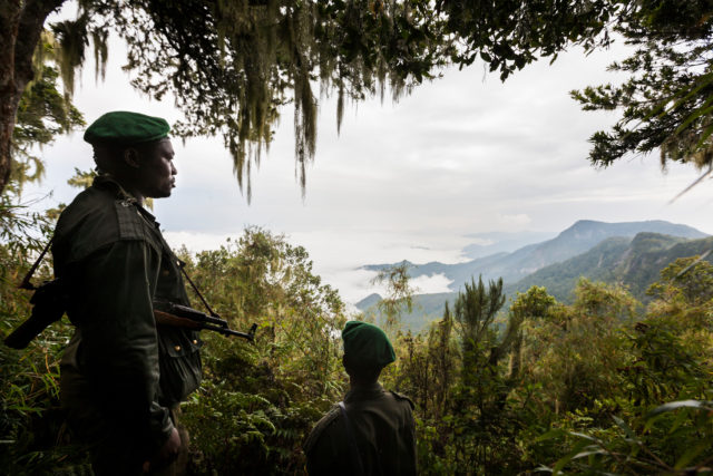 Rangers at the Virunga national park.