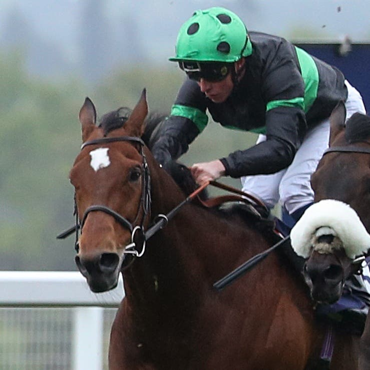 Prince Of Arran (right) on his way to finishing second at Ascot last season