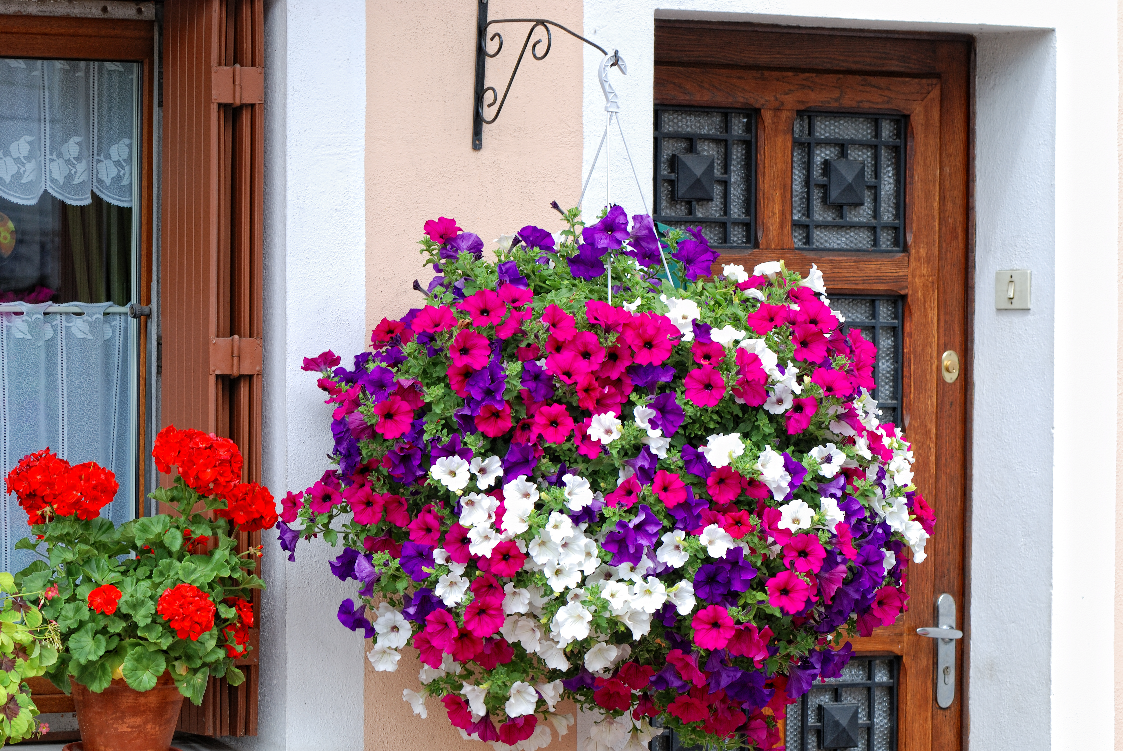 Hanging baskets in bloom (Thinkstock/PA)