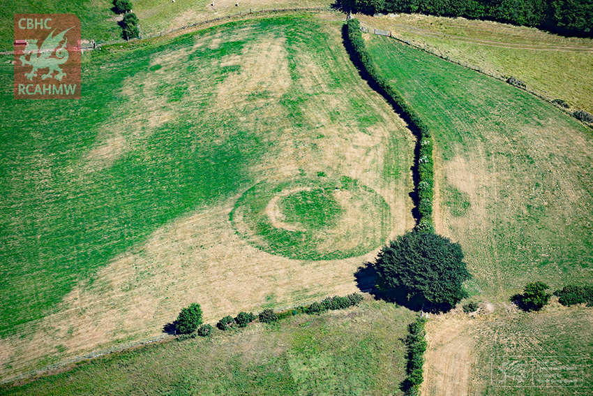 The almost ploughed-down medieval castle mound at Castell Llwyn Gwinau, Tregaron, showing clearly under parched conditions. (RCAHMW)