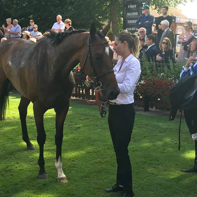 Danceteria after winning at Newmarket