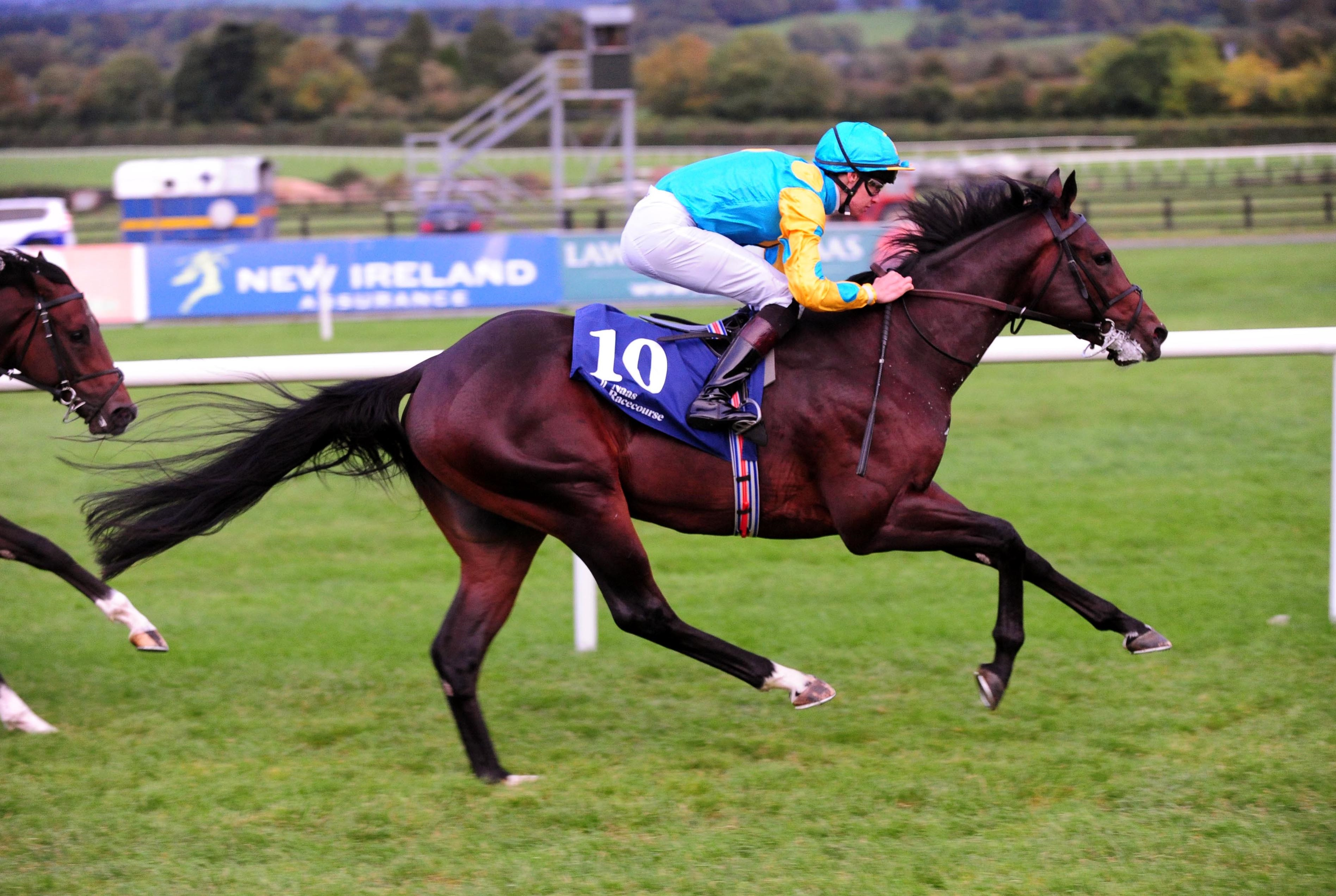 The Irish EBF Star Appeal Stakes is worth €60,000
