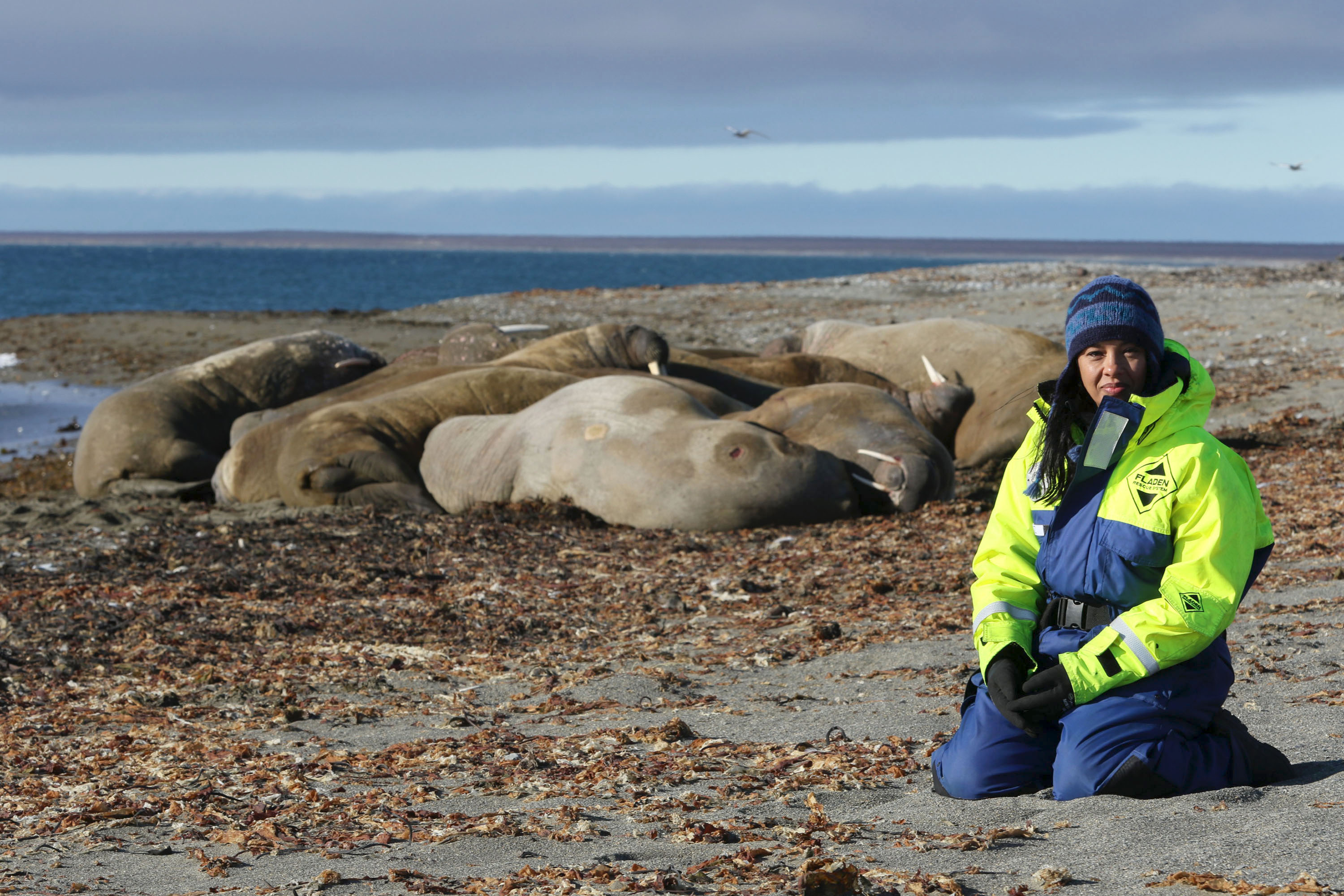 Liz Bonnin with walruses in Svalbard, filming for Drowning in Plastic. (BBC/Raw TV Ltd/ Alisdair Livingstone/PA)