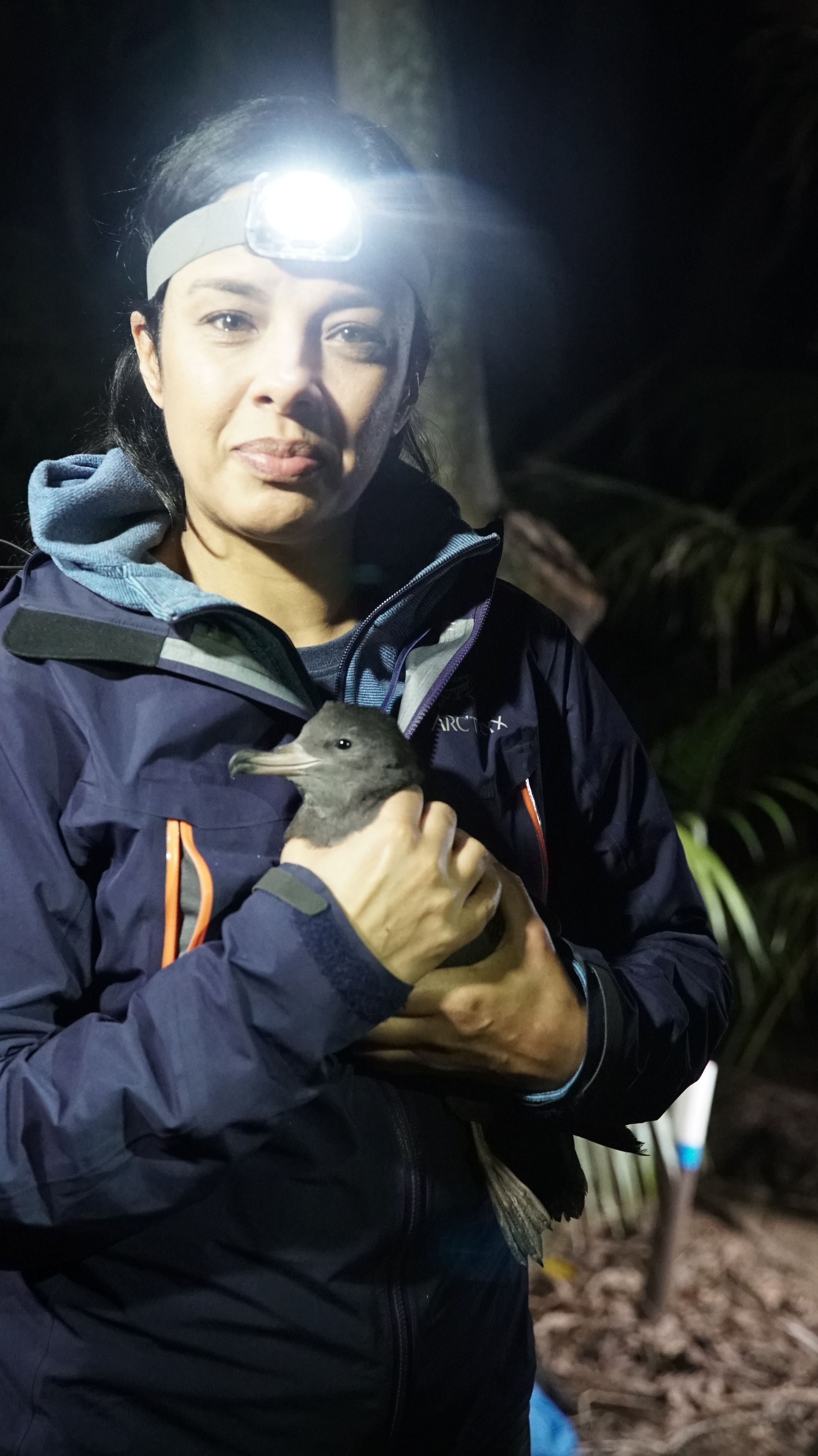Liz Bonnin with a shearwater chick on Lord Howe Island. (BBC One/Raw TV Ltd/Alisdair Livingstone/PA)