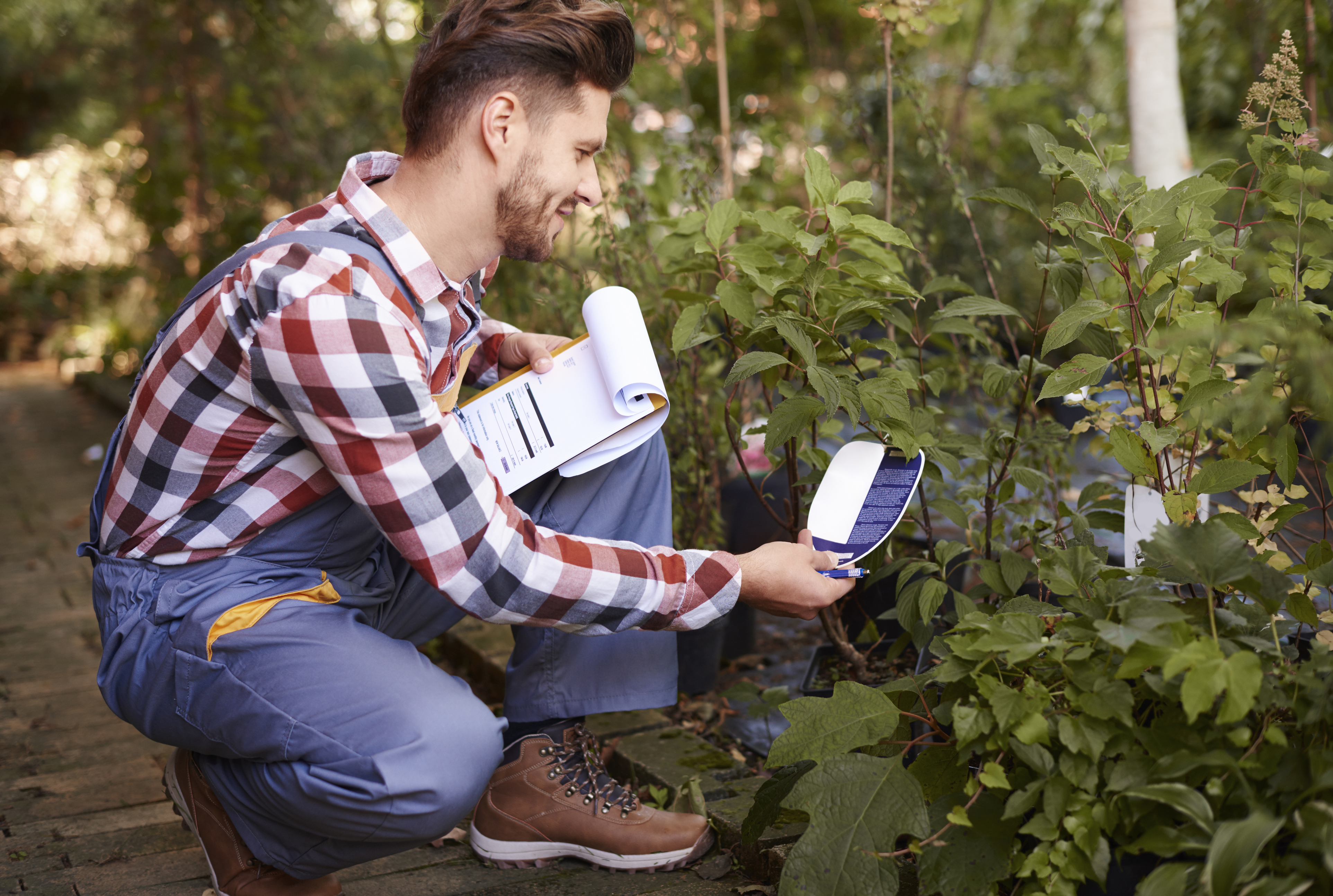 Check the label for plant gender (Thinkstock/PA)