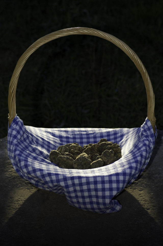 A basket of truffles (Visit Istria/PA)